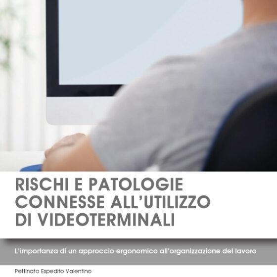1. RISCHI E PATOLOGIE CONNESSE ALL'UTILIZZO DI VIDEOTERMINALI