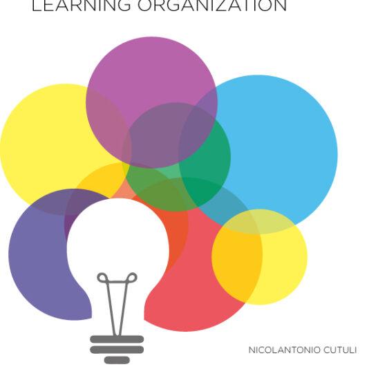 la-scuola-come-learning-organization